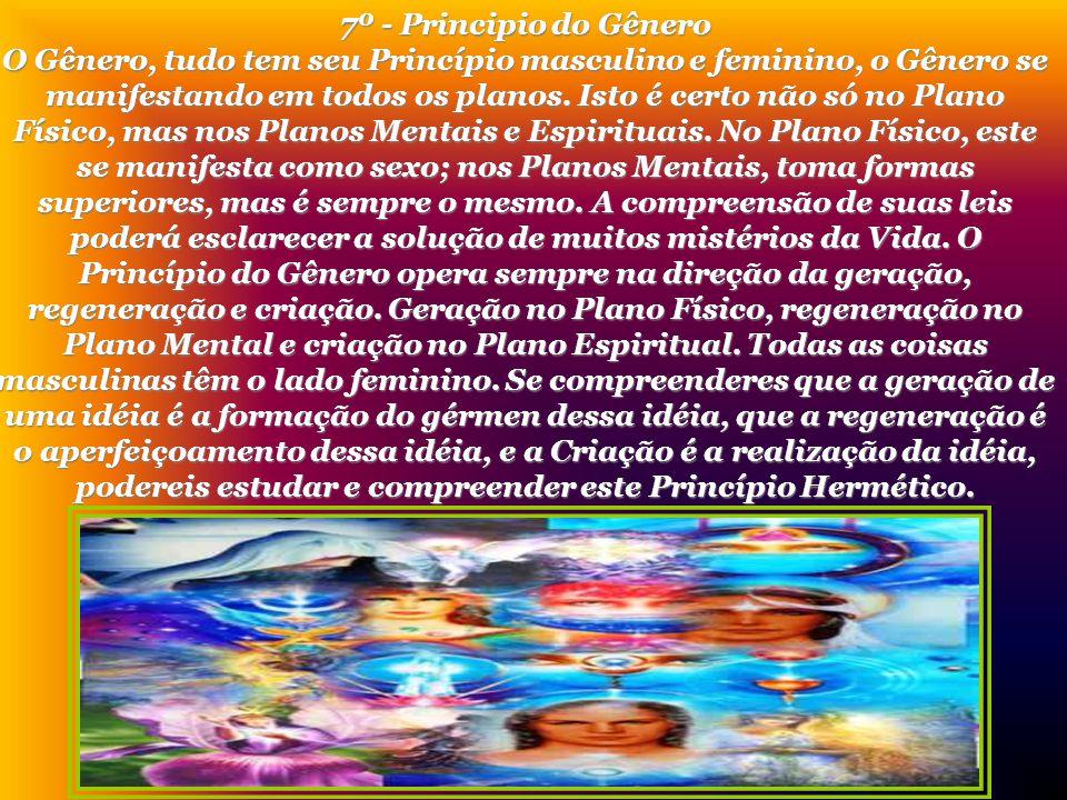 7º - Principio do Gênero