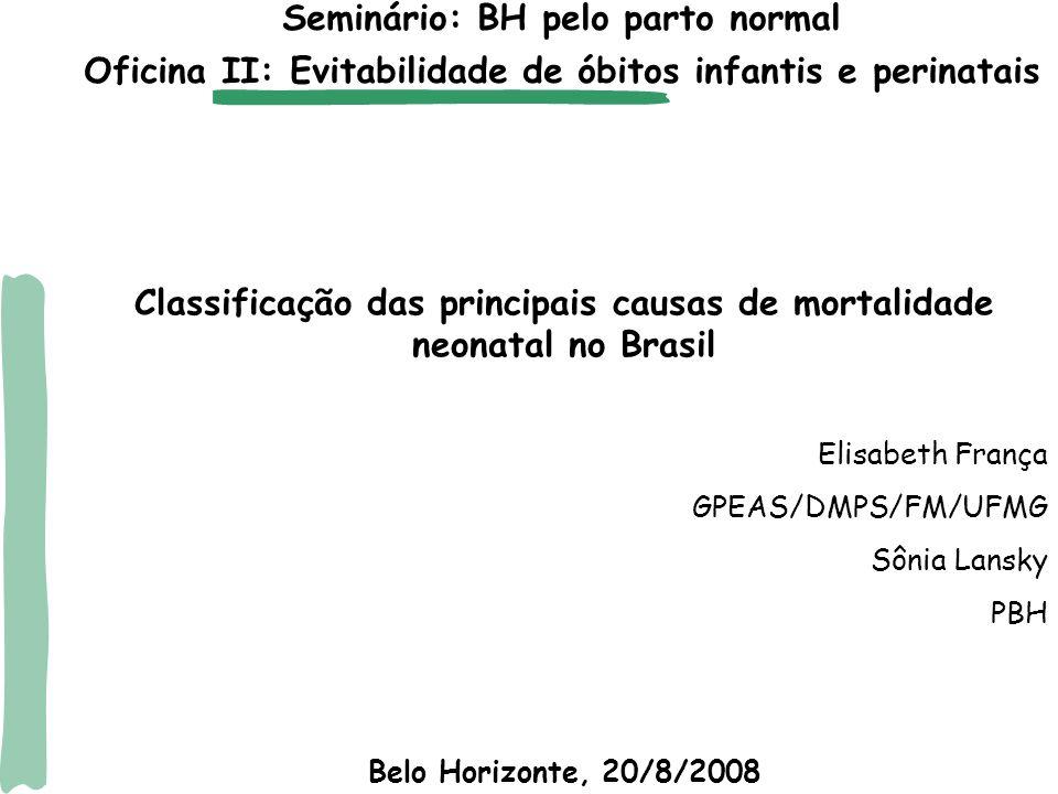 Seminário: BH pelo parto normal