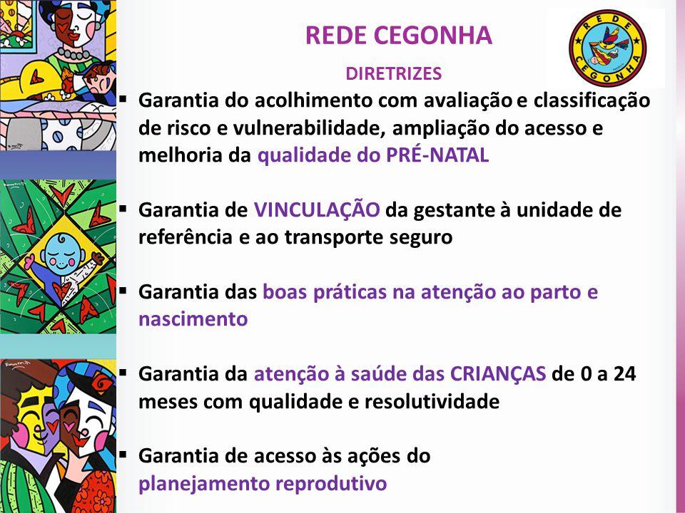 Rede Cegonha DIRETRIZES.