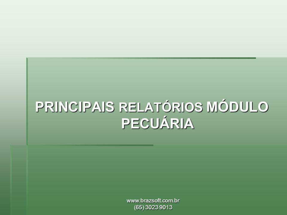 PRINCIPAIS RELATÓRIOS MÓDULO PECUÁRIA
