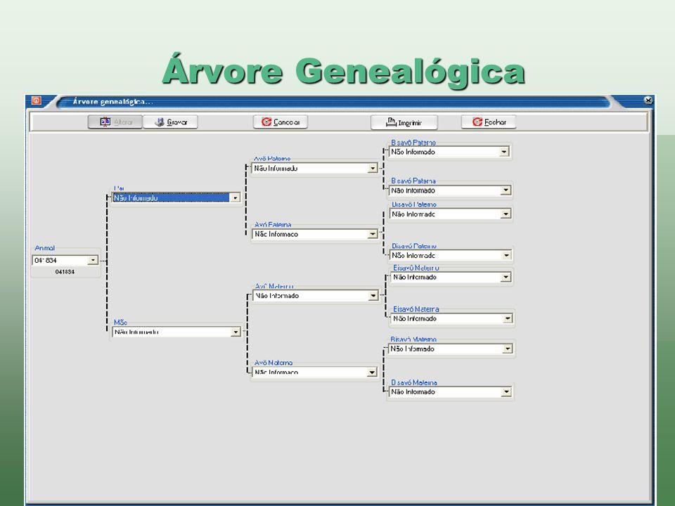 Árvore Genealógica www.brazsoft.com.br (65) 3023 9013