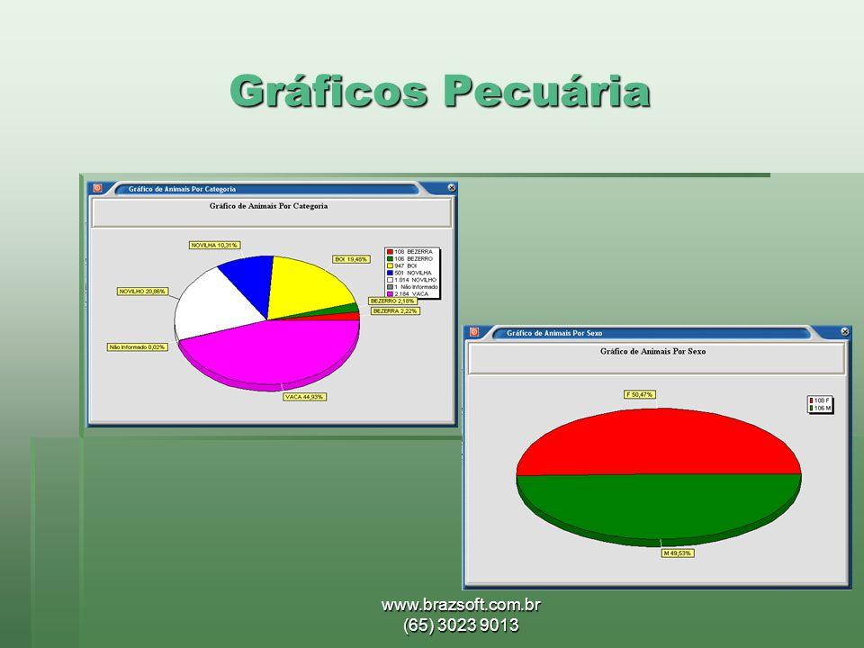Gráficos Pecuária www.brazsoft.com.br (65) 3023 9013