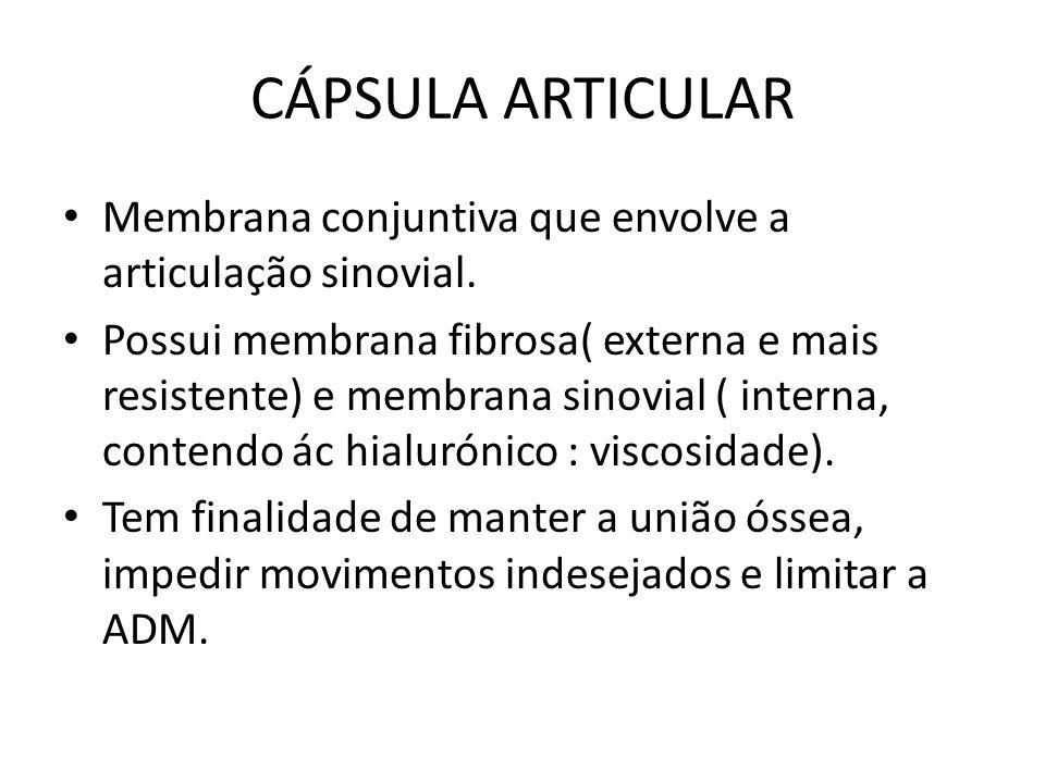 CÁPSULA ARTICULAR Membrana conjuntiva que envolve a articulação sinovial.