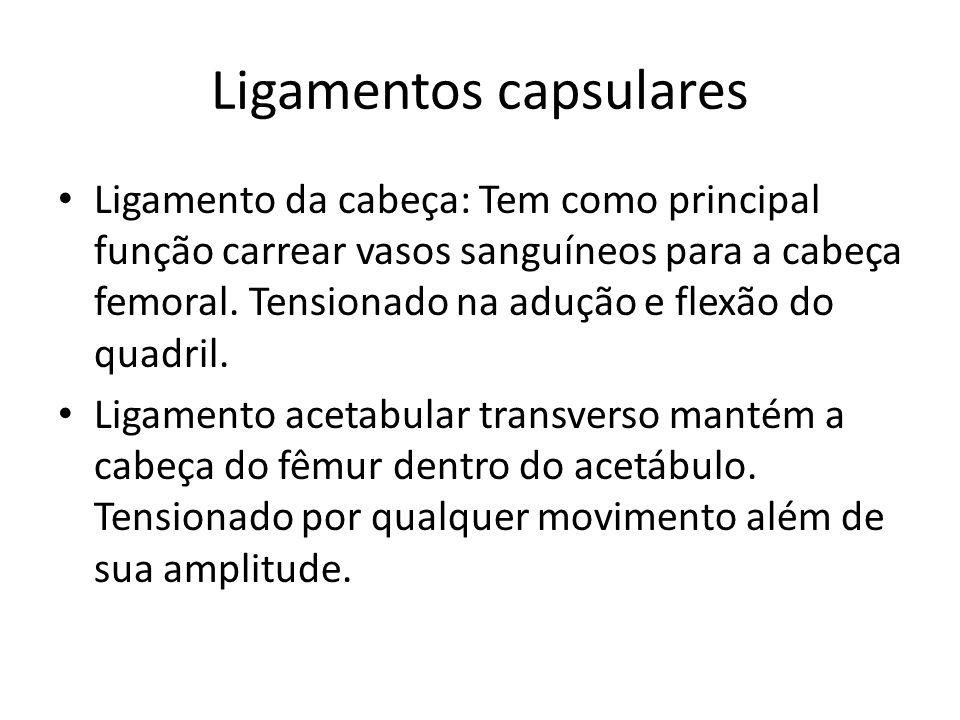 Ligamentos capsulares