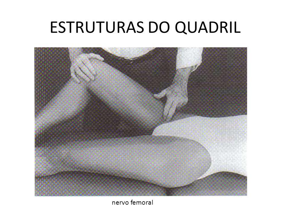 ESTRUTURAS DO QUADRIL nervo femoral