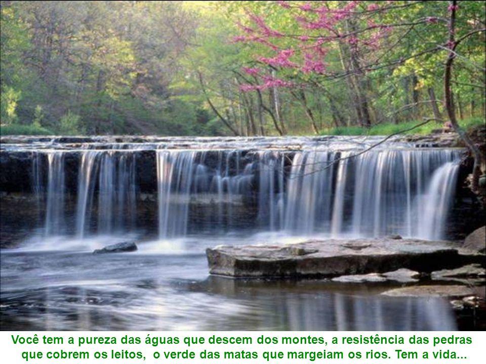 Você tem a pureza das águas que descem dos montes, a resistência das pedras