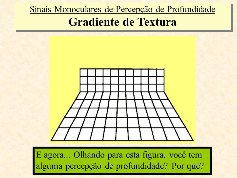 Sinais Monoculares de Percepção de Profundidade Gradiente de Textura