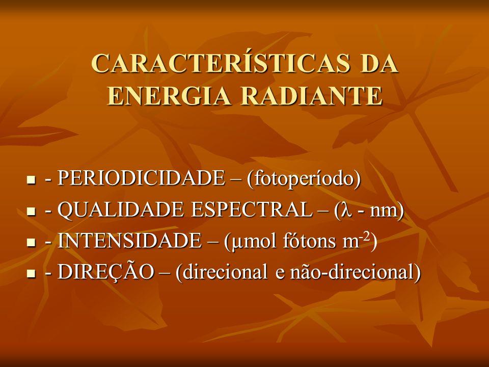 CARACTERÍSTICAS DA ENERGIA RADIANTE