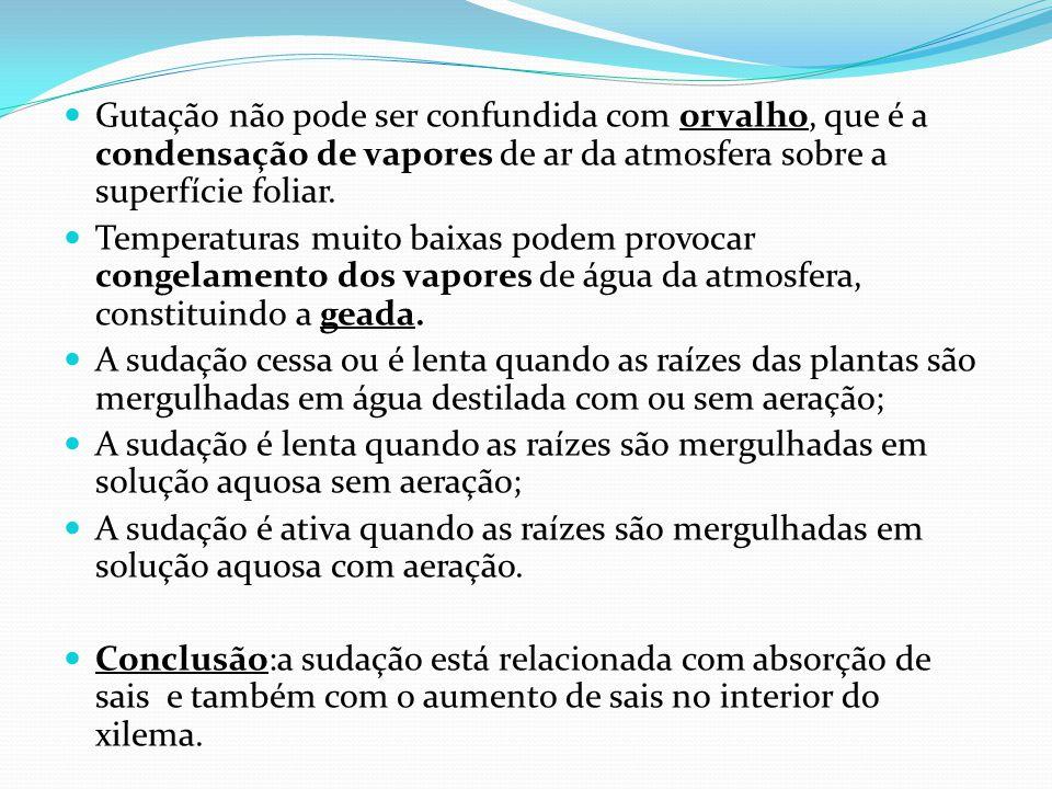 Gutação não pode ser confundida com orvalho, que é a condensação de vapores de ar da atmosfera sobre a superfície foliar.