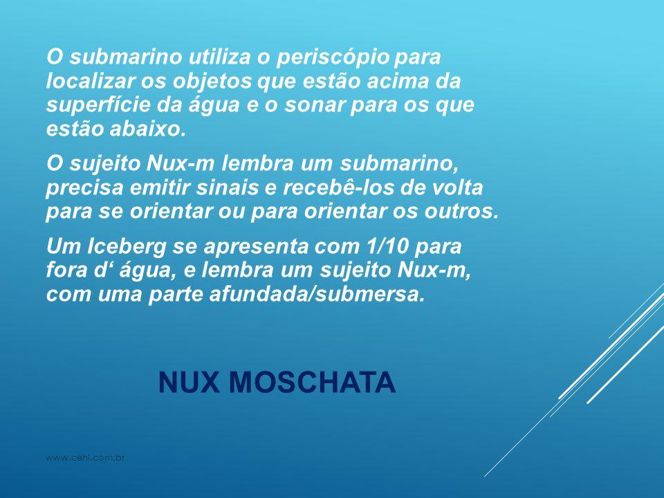 O submarino utiliza o periscópio para localizar os objetos que estão acima da superfície da água e o sonar para os que estão abaixo. O sujeito Nux-m lembra um submarino, precisa emitir sinais e recebê-los de volta para se orientar ou para orientar os outros. Um Iceberg se apresenta com 1/10 para fora d' água, e lembra um sujeito Nux-m, com uma parte afundada/submersa.
