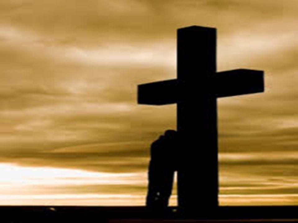 Evangelho: João 6, 37-40