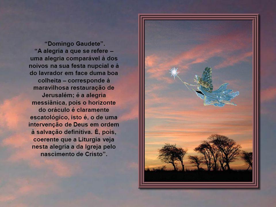 Domingo Gaudete .