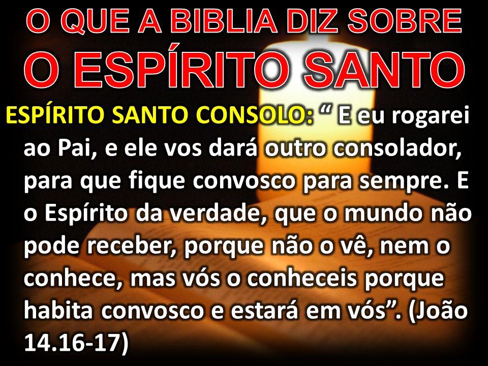 O QUE A BIBLIA DIZ SOBRE O ESPÍRITO SANTO