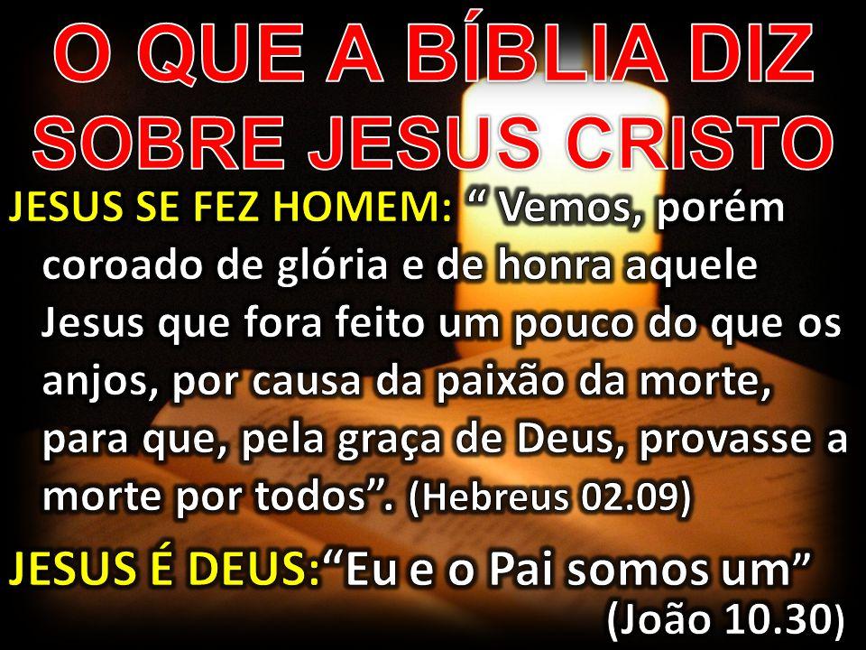 O QUE A BÍBLIA DIZ SOBRE JESUS CRISTO