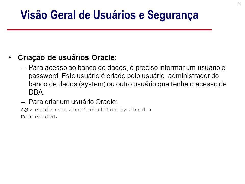 Visão Geral de Usuários e Segurança