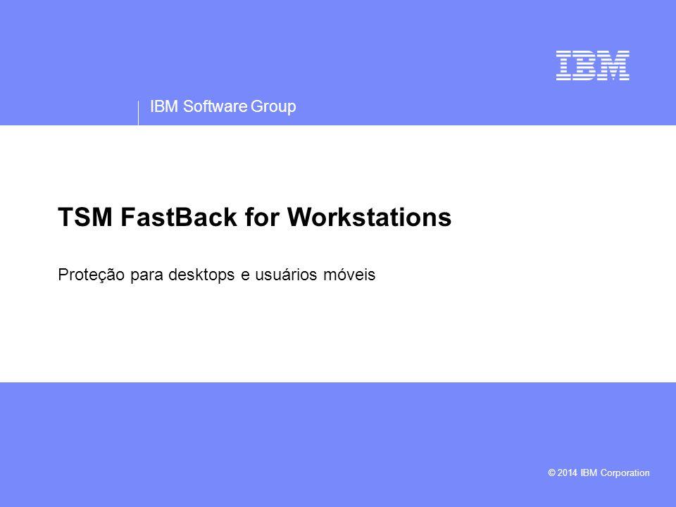 TSM FastBack for Workstations
