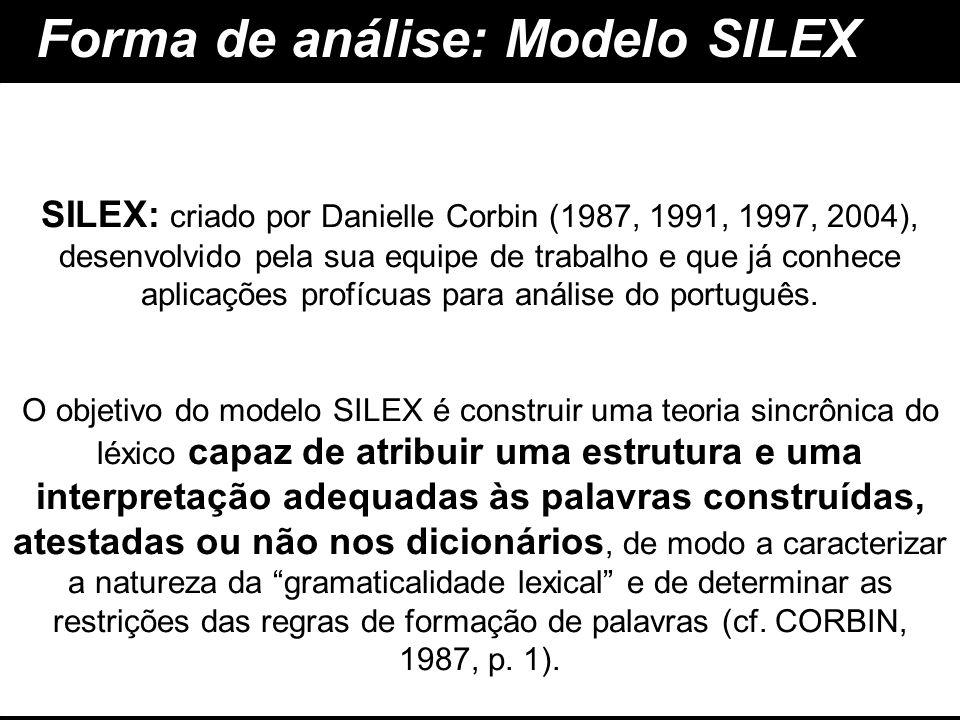 Forma de análise: Modelo SILEX