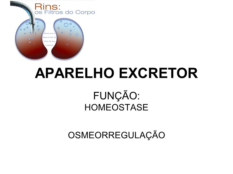 FUNÇÃO: HOMEOSTASE OSMEORREGULAÇÃO
