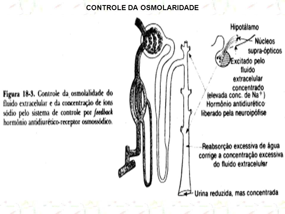 CONTROLE DA OSMOLARIDADE