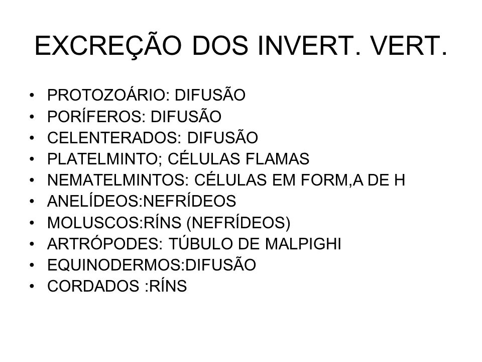 EXCREÇÃO DOS INVERT. VERT.