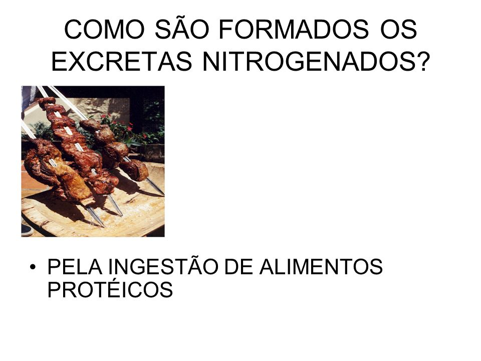 COMO SÃO FORMADOS OS EXCRETAS NITROGENADOS