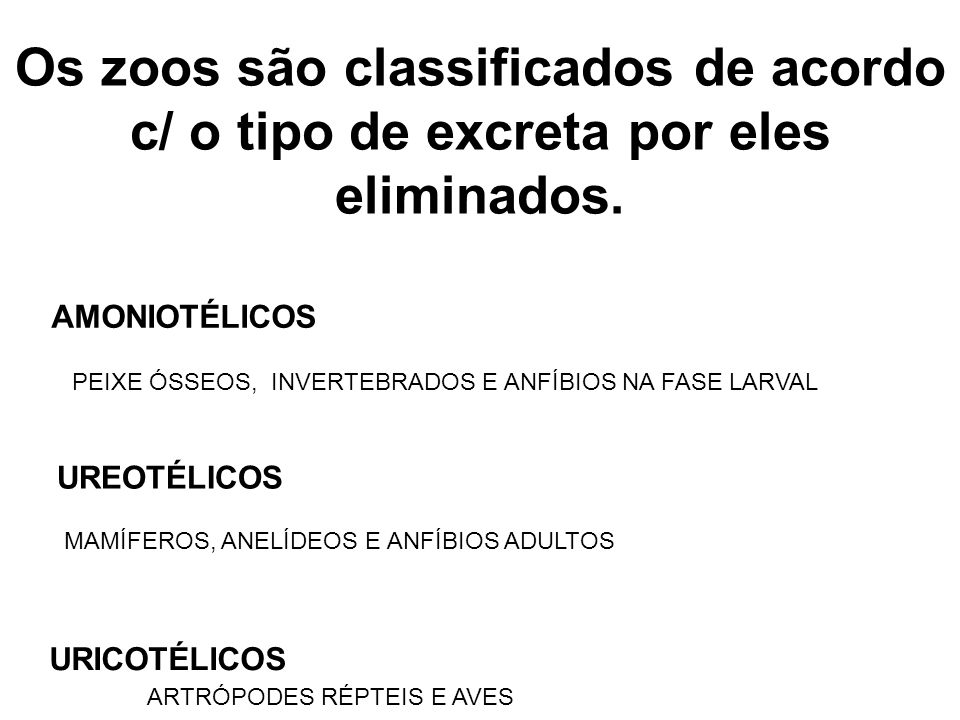 Os zoos são classificados de acordo c/ o tipo de excreta por eles eliminados.
