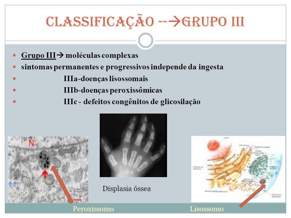 CLASSIFICAÇÃO --GRUPO III