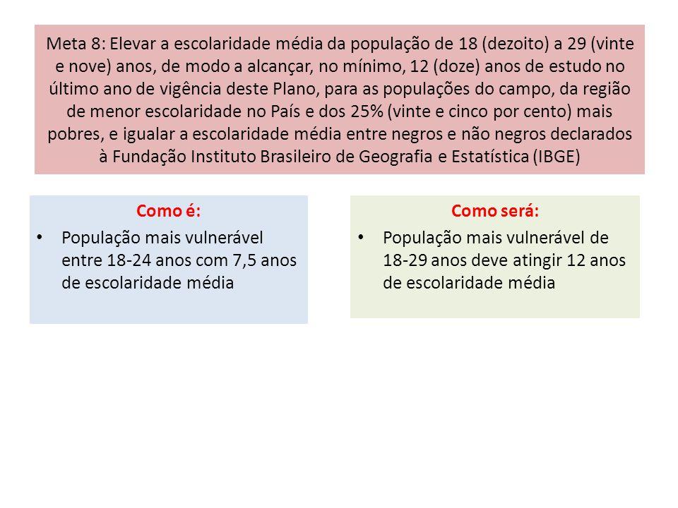 Meta 8: Elevar a escolaridade média da população de 18 (dezoito) a 29 (vinte e nove) anos, de modo a alcançar, no mínimo, 12 (doze) anos de estudo no último ano de vigência deste Plano, para as populações do campo, da região de menor escolaridade no País e dos 25% (vinte e cinco por cento) mais pobres, e igualar a escolaridade média entre negros e não negros declarados à Fundação Instituto Brasileiro de Geografia e Estatística (IBGE)