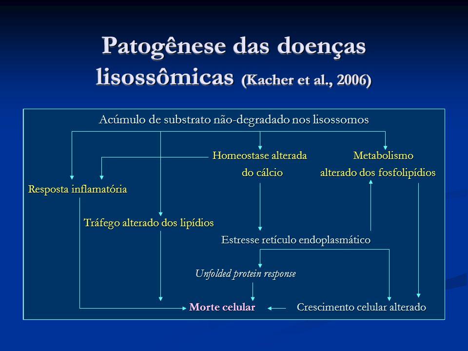 Patogênese das doenças lisossômicas (Kacher et al., 2006)