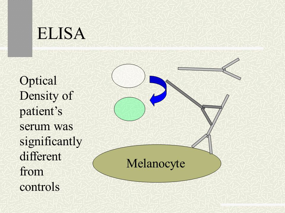 ELISA Optical Density of patient's serum was significantly different from controls Melanocyte