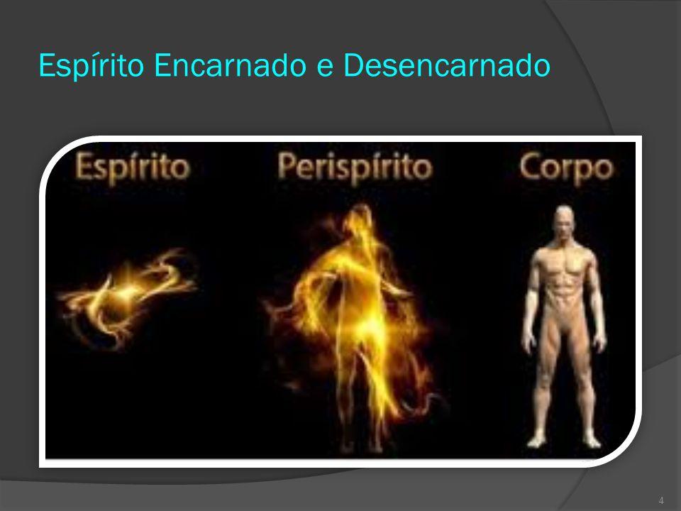 Espírito Encarnado e Desencarnado