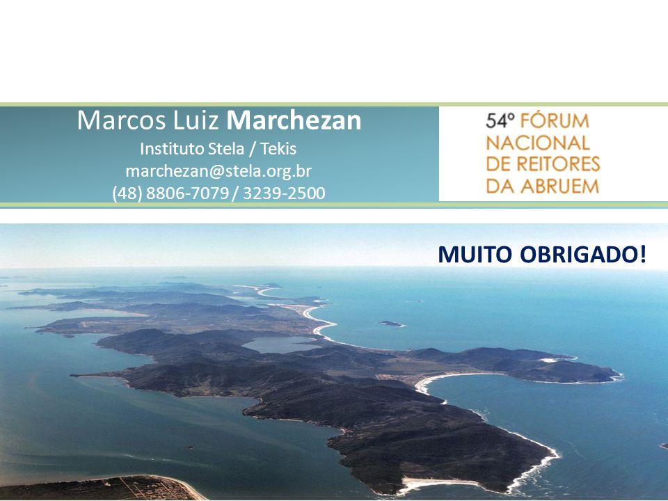 Marcos Luiz Marchezan Instituto Stela / Tekis marchezan@stela. org