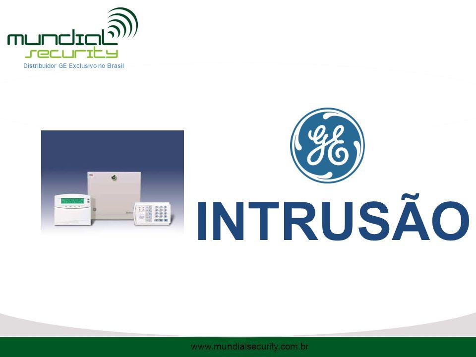 INTRUSÃO www.mundialsecurity.com.br