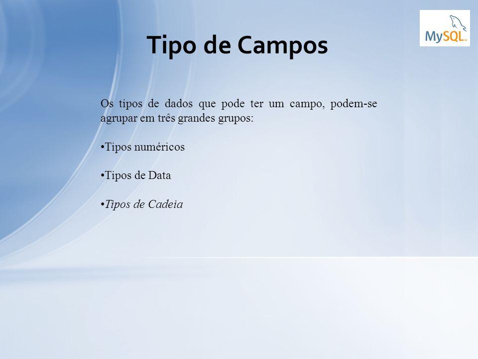 Tipo de Campos Os tipos de dados que pode ter um campo, podem-se agrupar em três grandes grupos: Tipos numéricos.