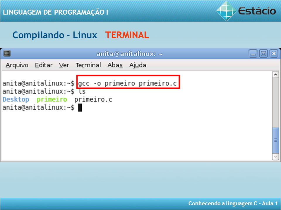 Compilando - Linux TERMINAL