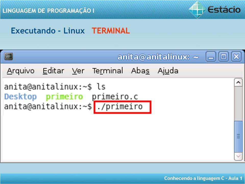 Executando - Linux TERMINAL