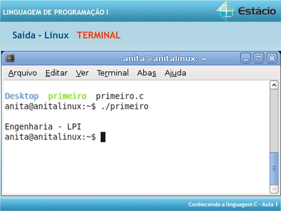 Saída - Linux TERMINAL
