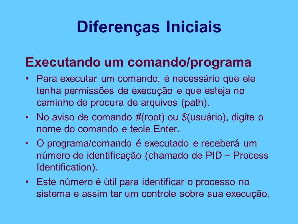Diferenças Iniciais Executando um comando/programa