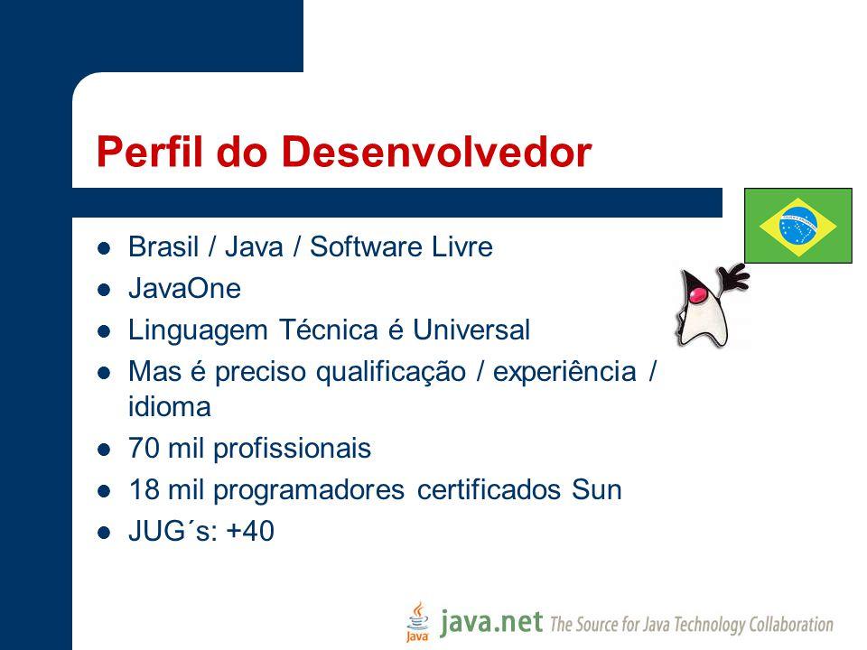 Perfil do Desenvolvedor