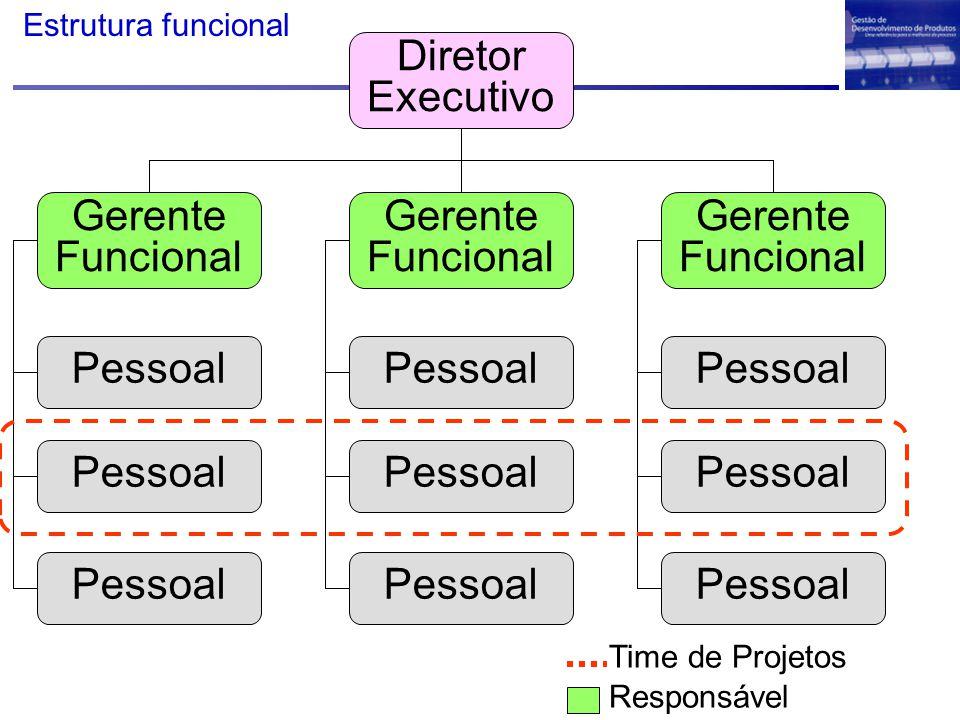 Diretor Executivo Gerente Funcional Pessoal Estrutura funcional