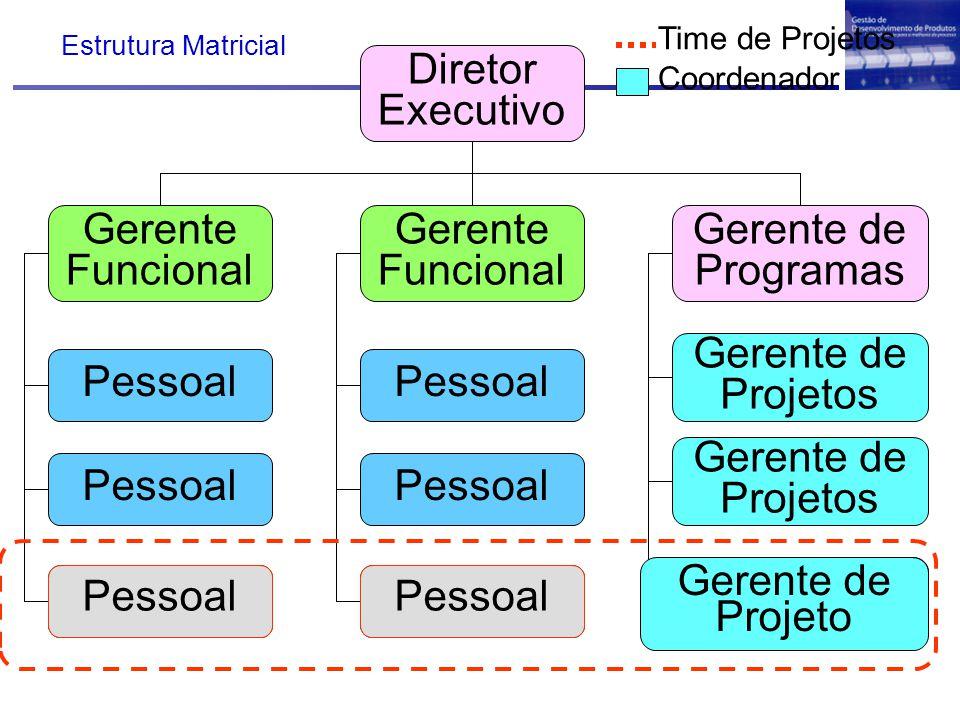 Diretor Executivo Gerente Funcional Gerente de Programas Pessoal