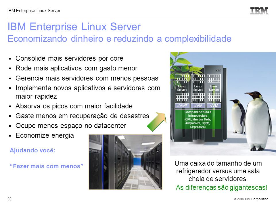 IBM Enterprise Linux Server Economizando dinheiro e reduzindo a complexibilidade
