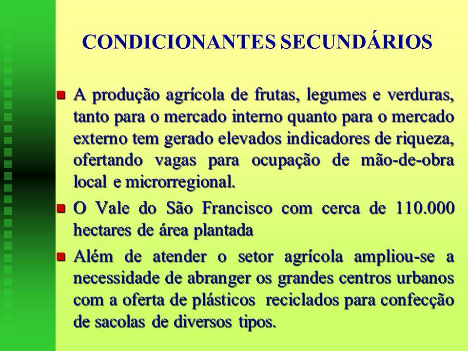CONDICIONANTES SECUNDÁRIOS