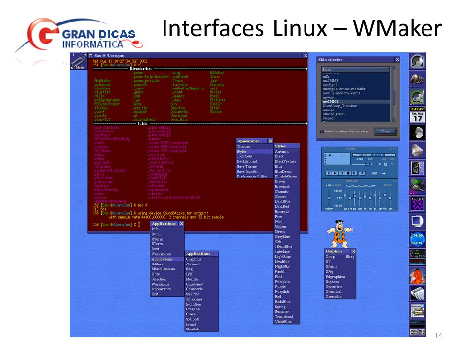 Interfaces Linux – WMaker