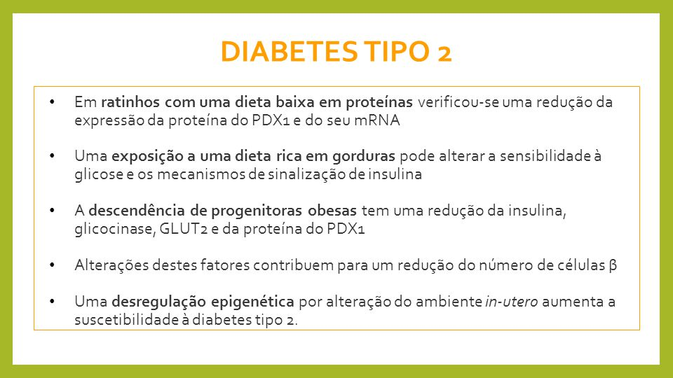 DIABETES TIPO 2 Em ratinhos com uma dieta baixa em proteínas verificou-se uma redução da expressão da proteína do PDX1 e do seu mRNA.