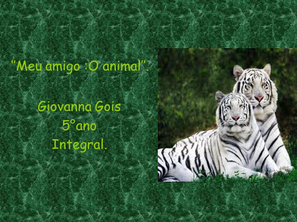 ''Meu amigo :O animal''.