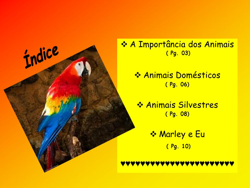 Índice A Importância dos Animais Animais Domésticos Animais Silvestres