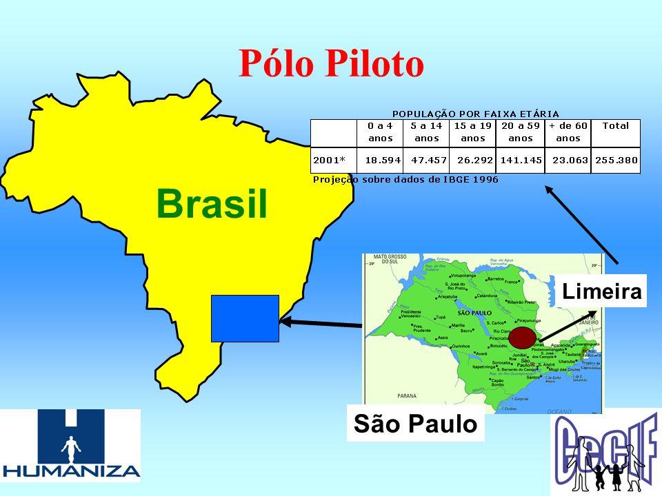 Pólo Piloto Brasil Limeira São Paulo