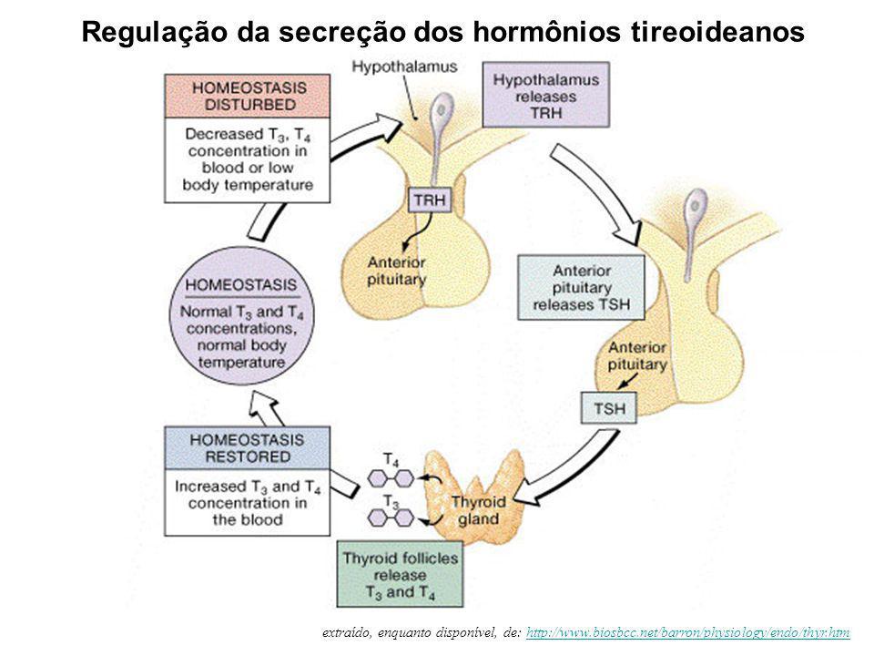 Regulação da secreção dos hormônios tireoideanos