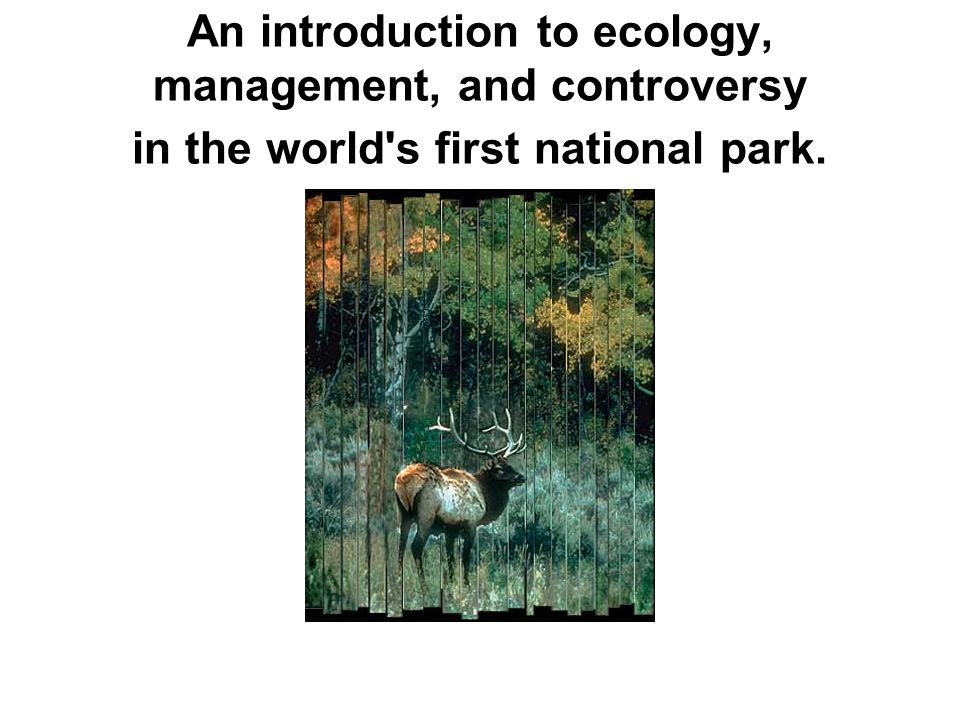 An introduction to ecology, management, and controversy in the world s first national park.